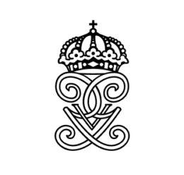 Stiftelsens ungdomsledarstipendium